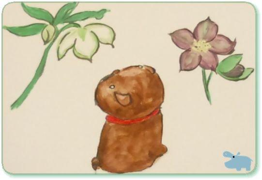 わんこ花を見る絵.jpg
